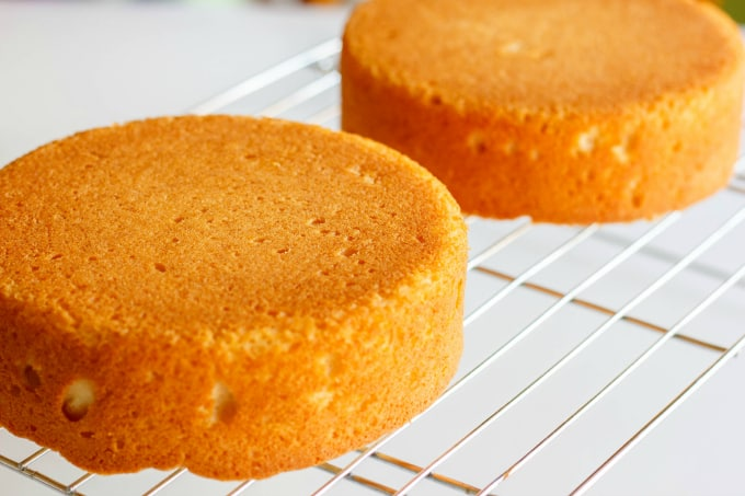 Basic Vanilla Cake Recipe 3