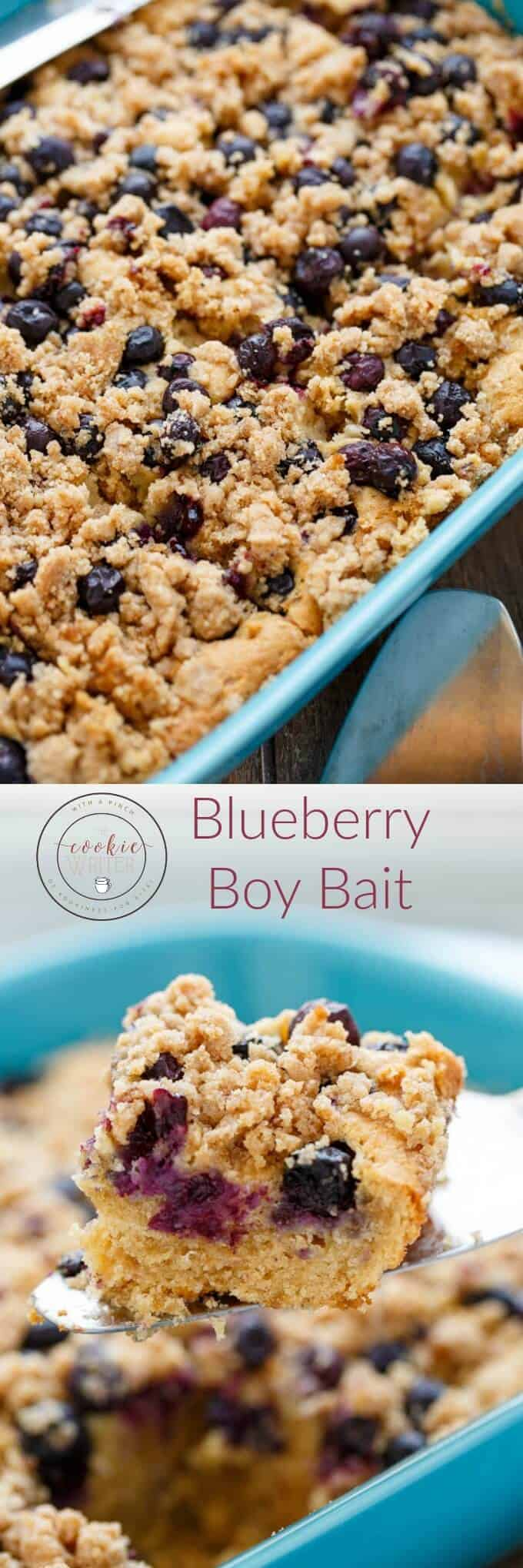 Blueberry Boy Bait - The Cookie Writer
