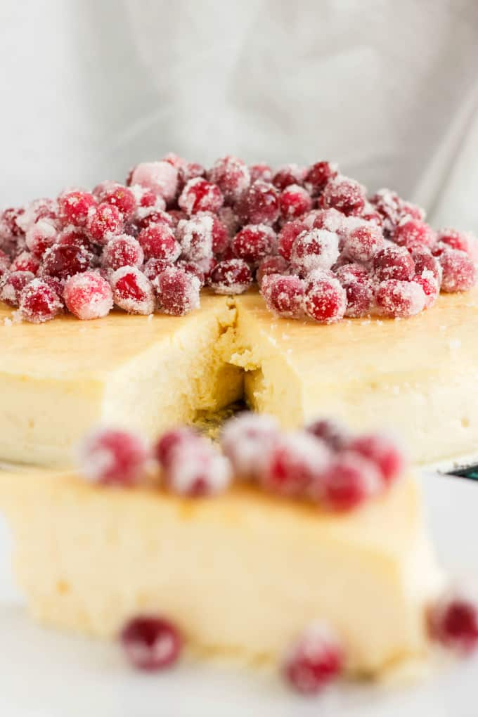 Crust-Less Lemon Cheesecake with Candied Cranberries 7