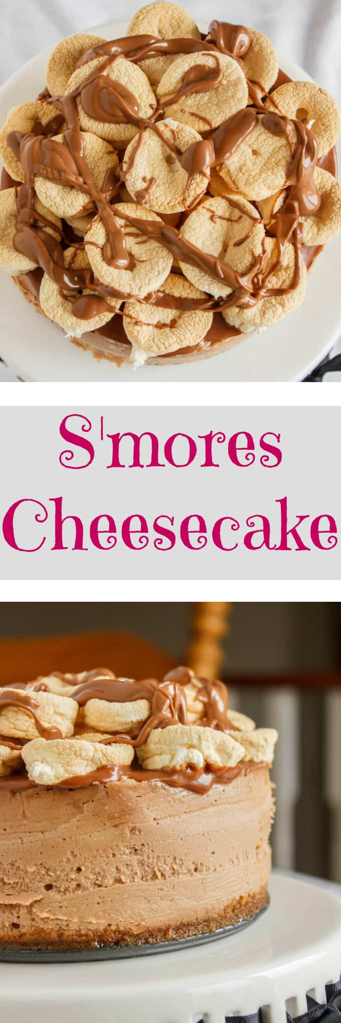 S'mores Cheesecake 4