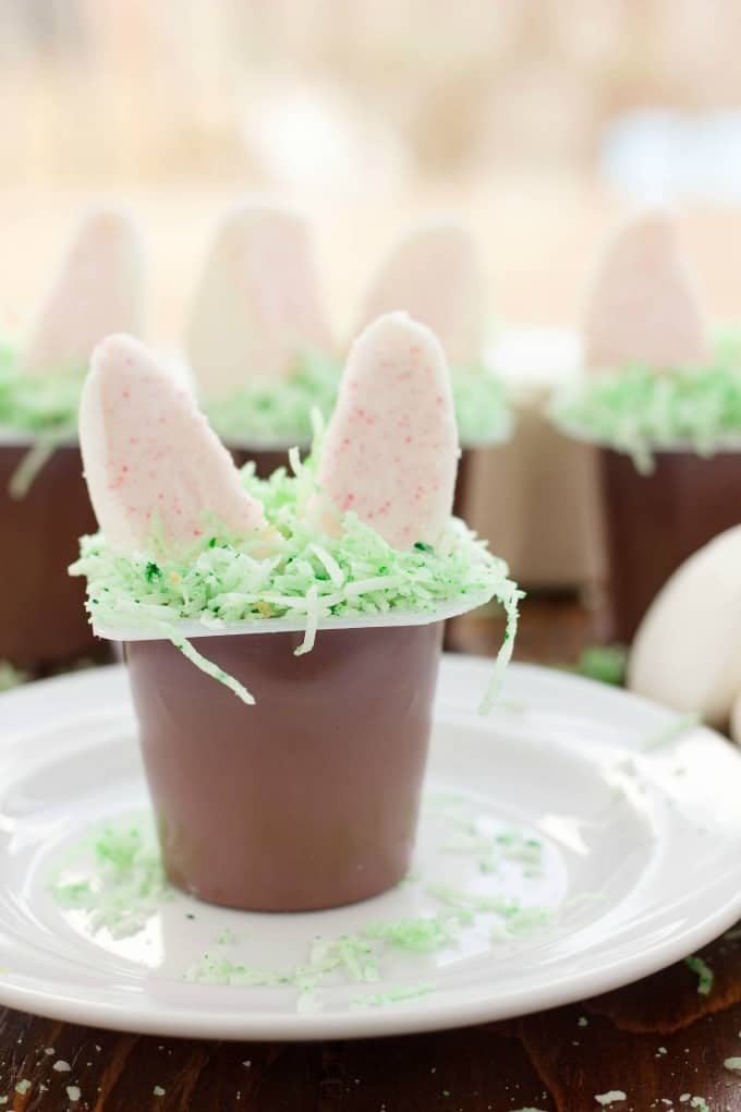 Marshmallow Bunny Ear Pudding Cups #nobake