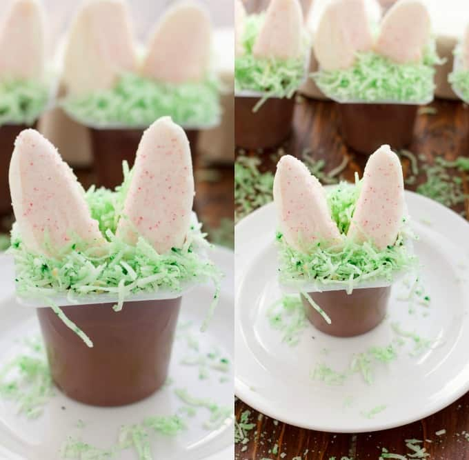 Marshmallow Bunny Ear Pudding Cups