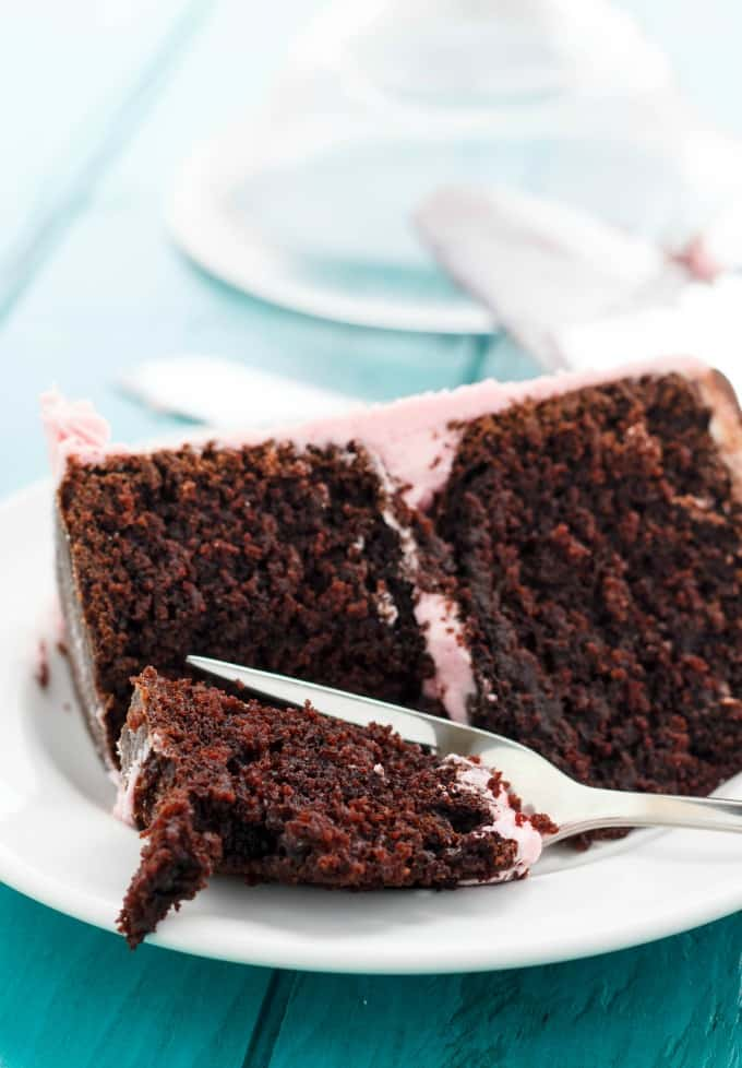 Chocolate Cake Recipe Tutorial from The Cookie Writer! #chocolate