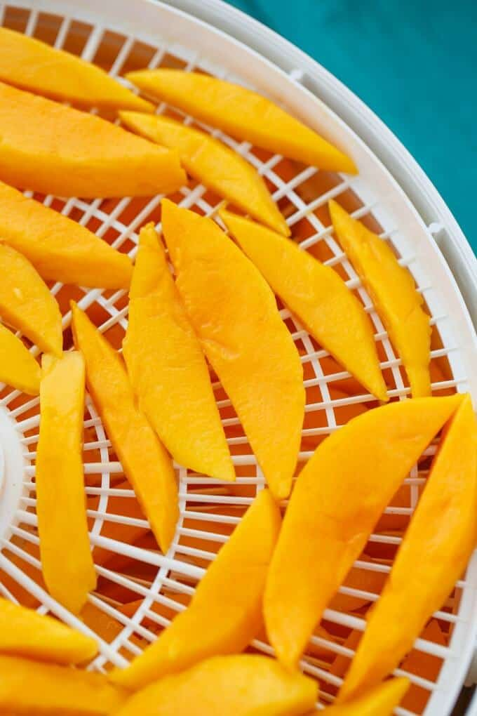 Dried Mango Slices in the Dehydrator #healthy