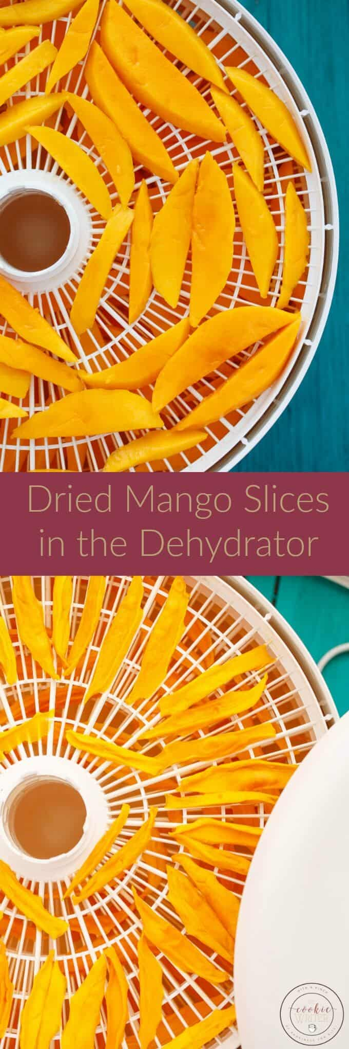 Dried Mango Slices in the Dehydrator