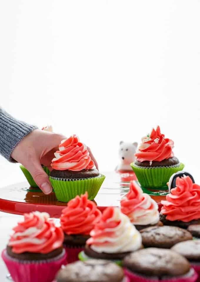 Candy Cane Swirl Cupcakes (Ricki's Sweaters & Sweets Giveaway!)