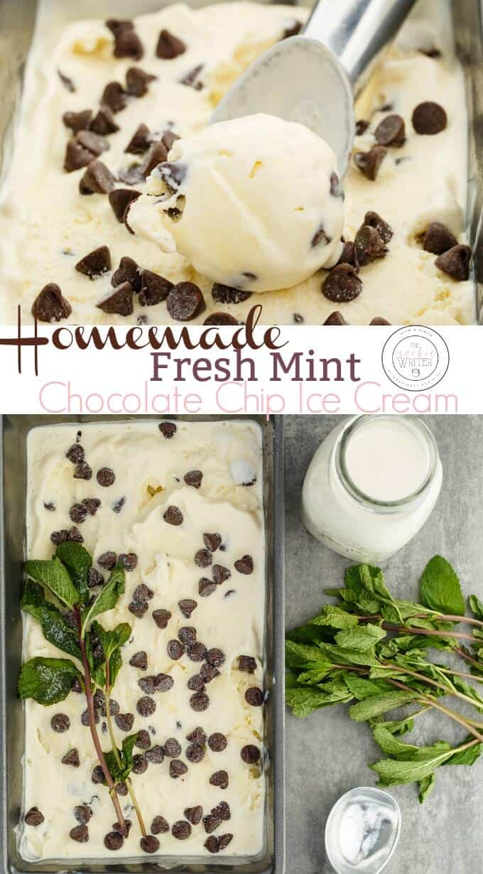 Homemade Fresh Mint Chocolate Chip Ice Cream